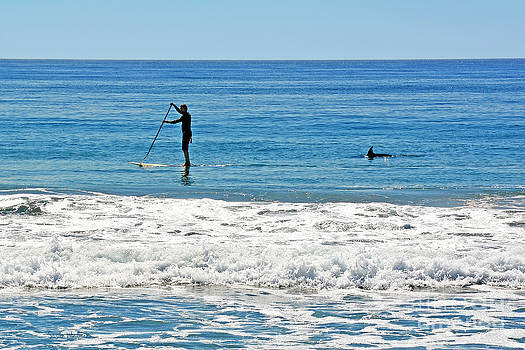 Susan Wiedmann - Paddle Boarder and Dolphin