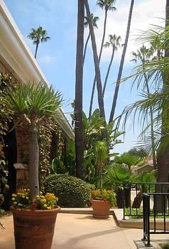 Paddock Gardens At Del Mar by Melissa McCrann