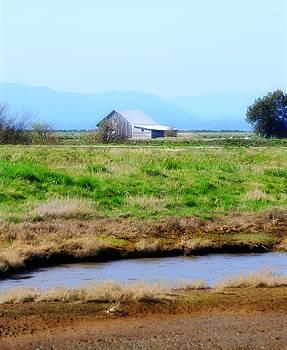 Padilla Barn by Christine Carter
