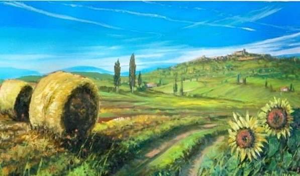 paesaggio con Casole d'Elsa by Sandro  Mulinacci