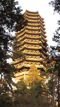 Alfred Ng - pagoda at Peking university