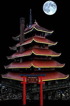 Pagoda by DJ Florek
