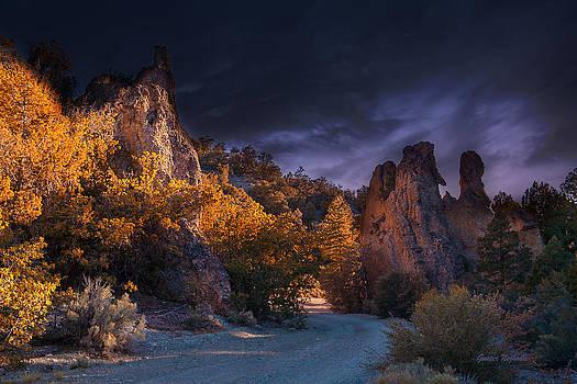 Pahrump - Road to Wheeler Peak by Gunter Nezhoda