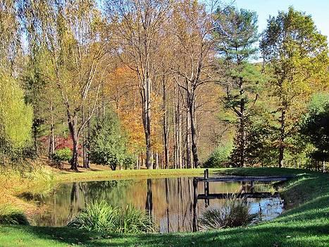 Paige County Pond by Christine Bradley