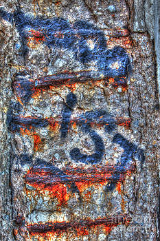 Paint and rust 25 by Jim Wright