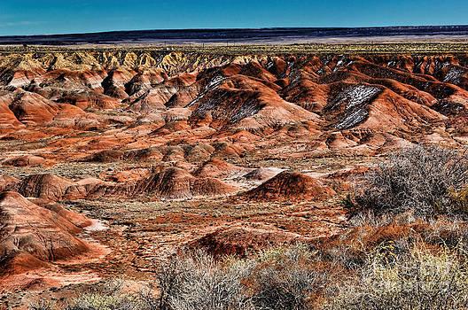 Jon Burch Photography - Painted Desert in Winter