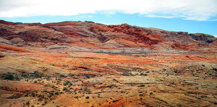 Frank Wilson - Painted Desert Panorama