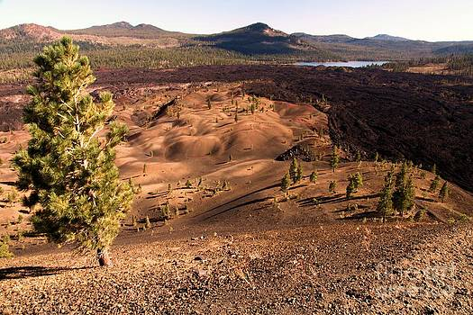 Adam Jewell - Painted Dunes Overlook