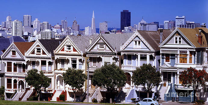 Painted Ladies by Ron Smith
