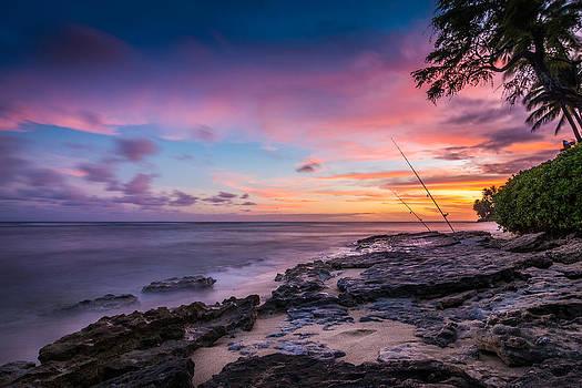 Painted Paradise by John Perez