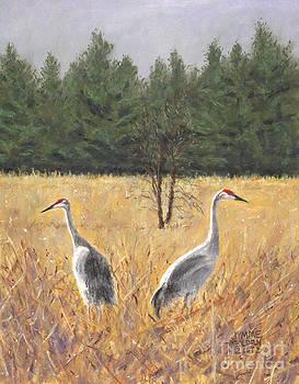 Pair of Sandhill Cranes by Jymme Golden