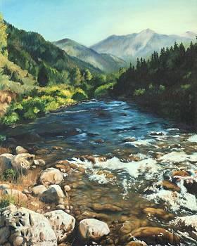 Palisades Creek  by Lori Brackett