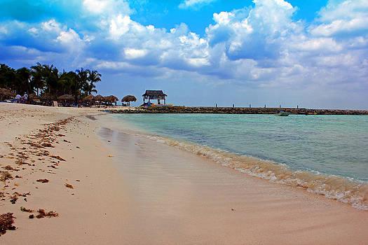 Carolyn Stagger Cokley - palm beach