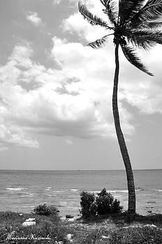 Marianne Kuzimski - Palm in the Wind