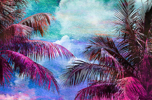 Palmscape Paradise by Laura Fasulo