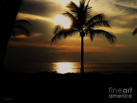Palm Silhouette 2 by Cheryl Young
