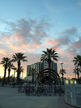 Palm Trees and bikes at Noho by Ann Marie Donahue