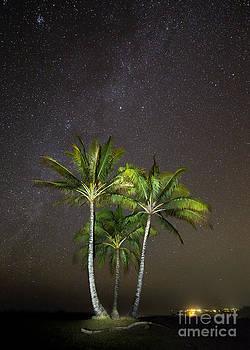 Palm Trees and Milky Way Galaxy Hanalei Bay Kauai by Dustin K Ryan