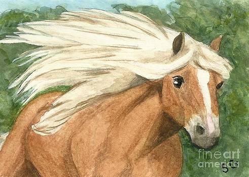 Palomino - Running With the Wind by Sherry Goeben