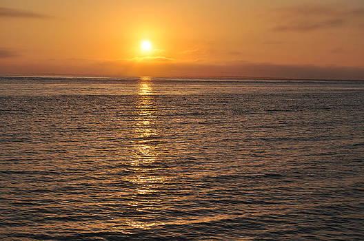 Pamlico Sunrise by Jeff Moose
