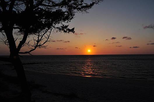 Pamlico Sunset by Jeff Moose