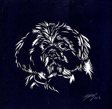Alfred Ng - pampered dog