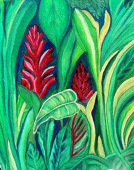 Panama Tropicale by Faye Silliman
