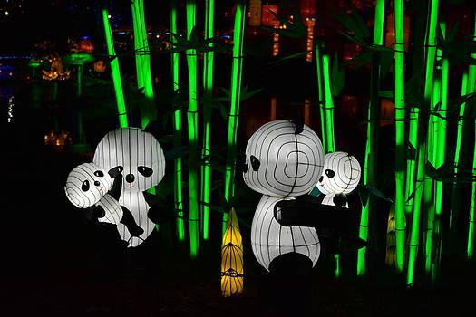 Panda Family by Jim Martin