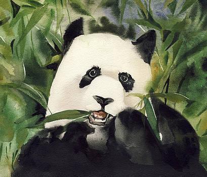 Alfred Ng - panda watercolor