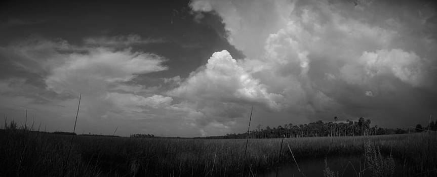 Panorama of a Gathering Storm by Phil Penne