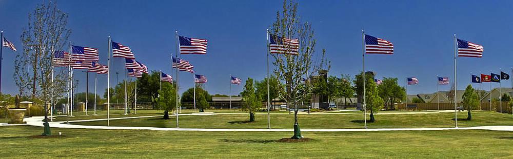 Allen Sheffield - Panorama of Flags - Veterans Memorial Park