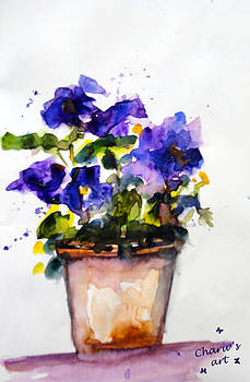 Pansies by Charu Jain