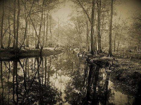 Panther Creek No. 1 by Phil Penne
