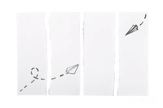Tim Hester - Paper Aeroplanes