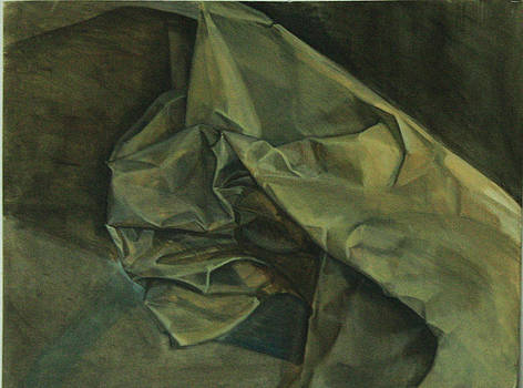 Paper Folds by Maria Degtyareva