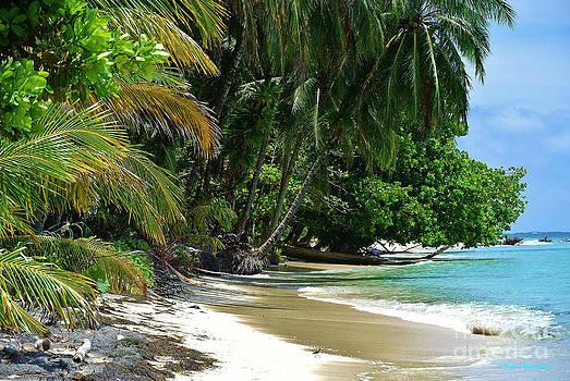 Li Newton - Paradise Found
