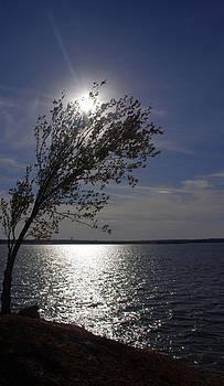 Lake-Texas-Paradise by Matthew Miller