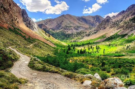 Paradise Valley by Diana Vitoshka