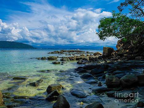 Paradise by Will Cardoso