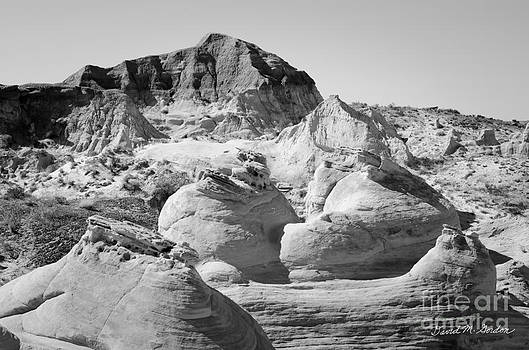 Dave Gordon - Paria Utah VIII