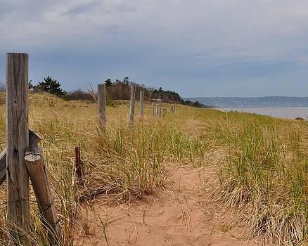 Park Point Minnesota Beach Entrance by Todd Soderstrom