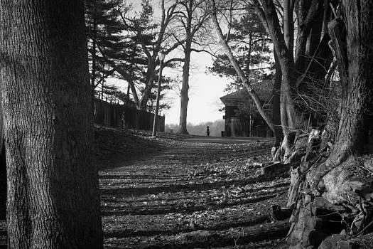Park Stroll by Richie Stewart