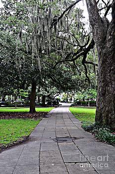 Park Walkway by Kathleen Struckle