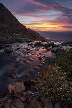 Parker Creek by Tuan Le