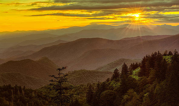 Parkway Gold by Christopher Mobley