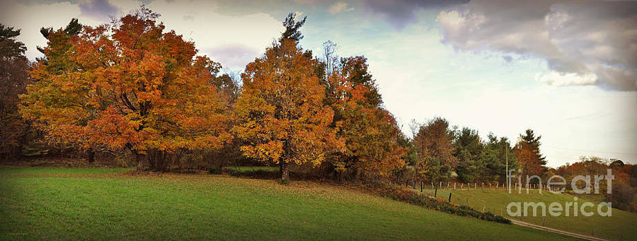 Parkway Panoramic by Eric Liller