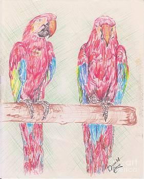 Parrots Perch by Donald Jones