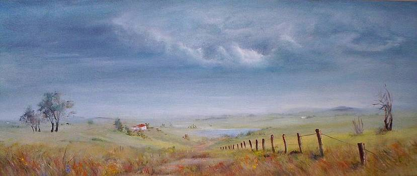 Passing Clouds by Rita Palm