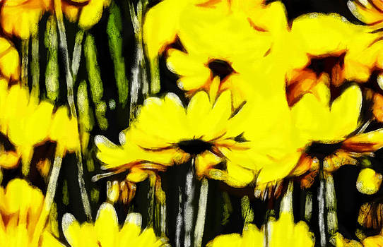 Stefan Kuhn - Pastel Flowers