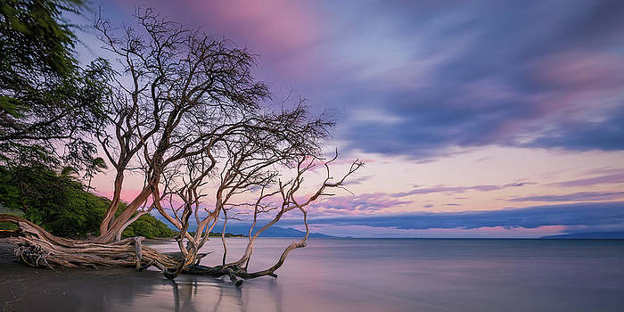 Pastels Over The Pacific by Hawaii  Fine Art Photography